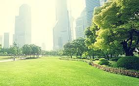 اقتصاد دولتی مانع احیای محیط زیست