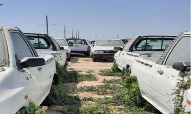 علف های هرز صنعت خودرو انگل وار به این صنعت چسبیده اند